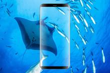 Galaxy S8 Handy gewinnen!