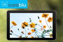 Huawei MediaPad gewinnen.